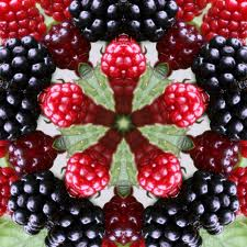 Berry kaleidoscope